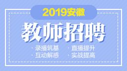 2019安徽教...