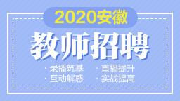 2020安徽教...